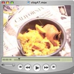 vlog47